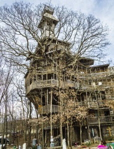 world's tallest tree house